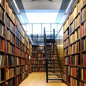 Библиотеки Строителя